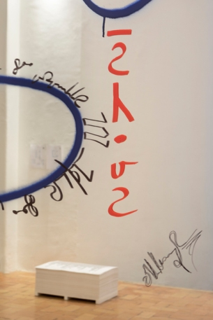 Moussa Sarr Narcisse avia (Le miroir de Narcisse), exhibition view, Take me I'm Yours, Villa Medicis, 2018